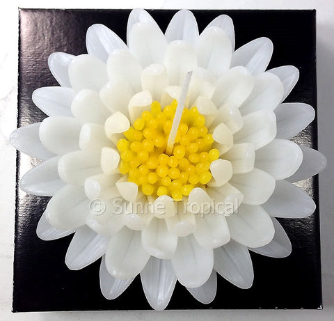 Flower Candles 5 Inch - Gerbera (White)