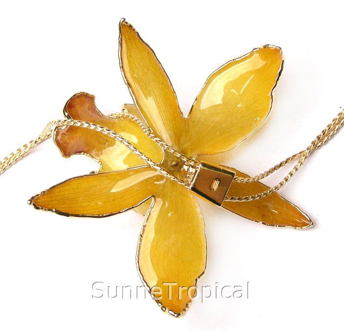 Cattleya Queen Real Orchid Jewelry Slider Necklace Gold 24K (Yellow)