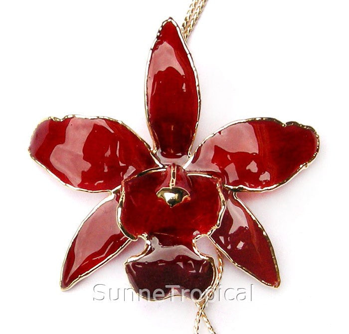 Cattleya Queen Real Orchid Jewelry Slider Necklace Gold 24K (Burgundy Red)