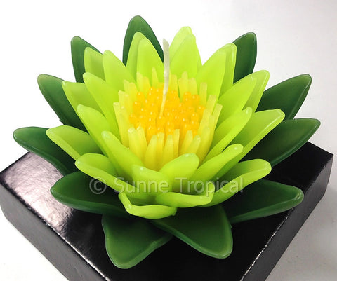 Flower Candles 5 Inch - Water Lily Lotus (Dark & Light Green)