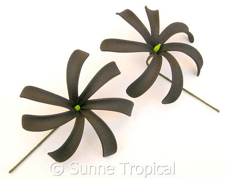 BLACK Tahitian Tiare foam flowers 3.5 inch hair pick (Pack 10)