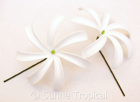 CLASSIC WHITE Tahitian Tiare foam flowers 3.5 inch hair pick (Pack 10)
