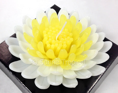Flower Candles 5 Inch - Chrysanthemums MUM (White Yellow)