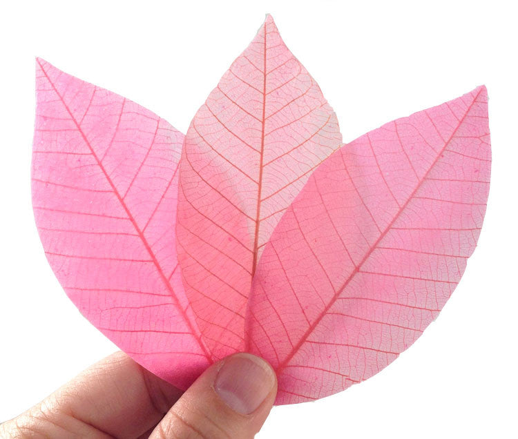 Biodegradable Eco Friendly Natural Real leaf soap unique gift soap ( Pink Honey 20 leafs )