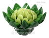 Flower Candles 5 Inch - Torch Ginger (Dark & Light Green)
