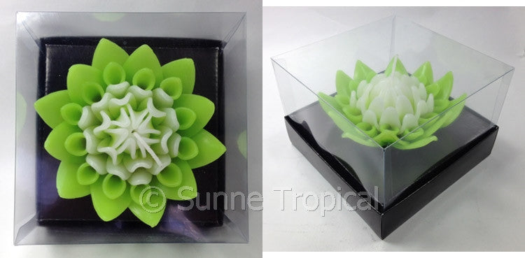 Flower Candles 5 Inch - Torch Ginger (Light Green/White)