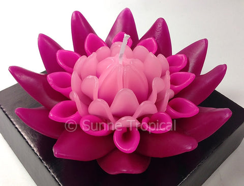 Flower Candles 5 Inch - Torch Ginger (Dark & Light Pink)