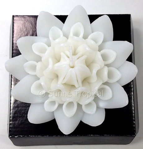 Flower Candles 5 Inch - Torch Ginger (White)