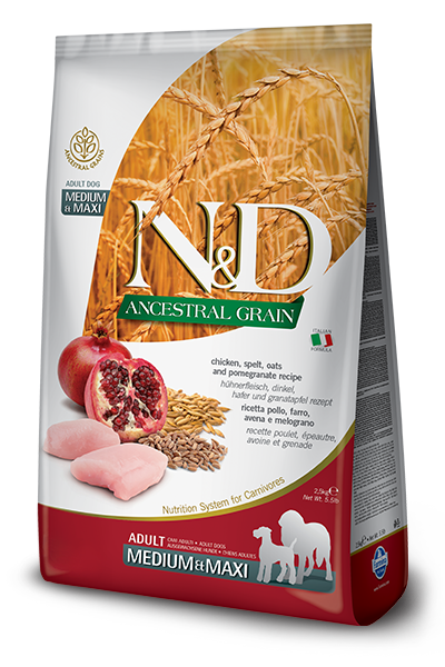 N&D Ancestral Grain Pui & Rodie ADULT MEDIUM & MAXI 12 kg