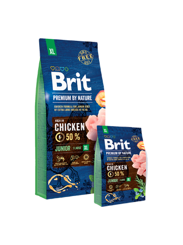 Brit Premium - Junior XL