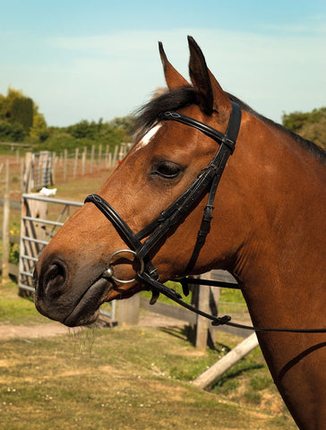 Heritage English Leather Bridle With Fancy Stitched Cavesson Noseband
