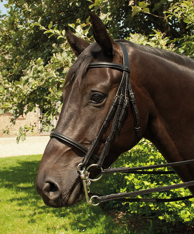Heritage English Leather Double Bridle