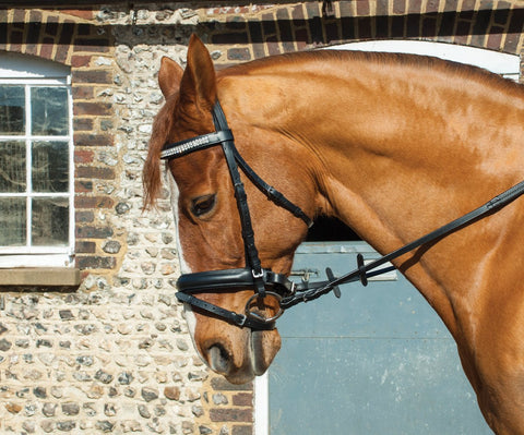 Heritage English Leather Crystal 'Comfort' Bridle With Flash Noseband