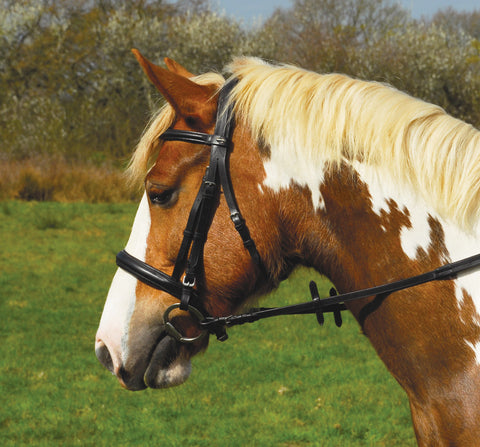 Heritage English Leather 'Comfort' Bridle With Cavesson Noseband