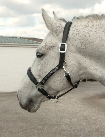 Heritage Crystal Leather Headcollar