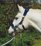 Rhinegold Anatomical Headcollar And Leadrope Set navy