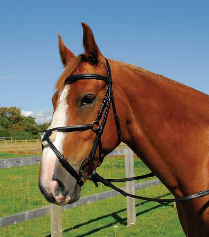 Heritage English Leather Bridle With Mexican Noseband