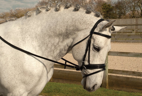 Rhinegold German Leather Patent Nose & Browband 'Comfort' Bridle With Flash Noseband