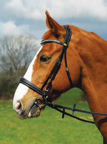 Rhinegold Italian Leather Anatomical Bridle With Cavesson Noseband