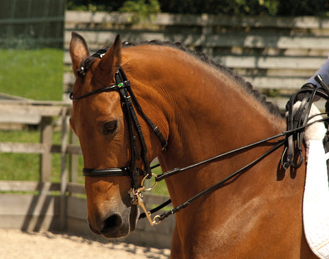Rhinegold Rolled Leather Double Bridle