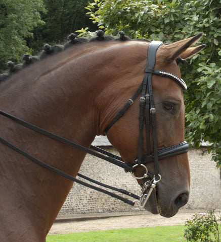 Rhinegold Italian Leather Anatomical Double Bridle
