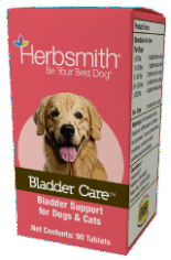 Bladder Care: Bladder Support