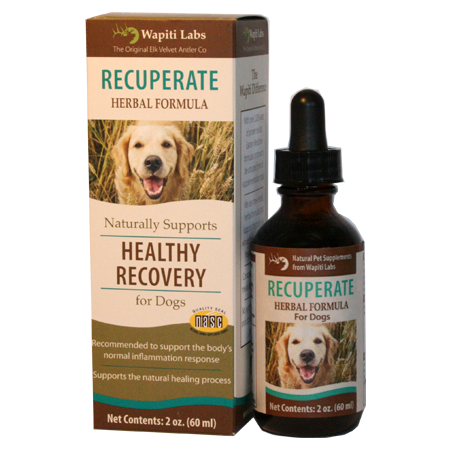 Recuperate Herbal Supplement for Dogs 2oz