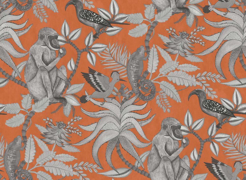 orange and grey animal wallpaper
