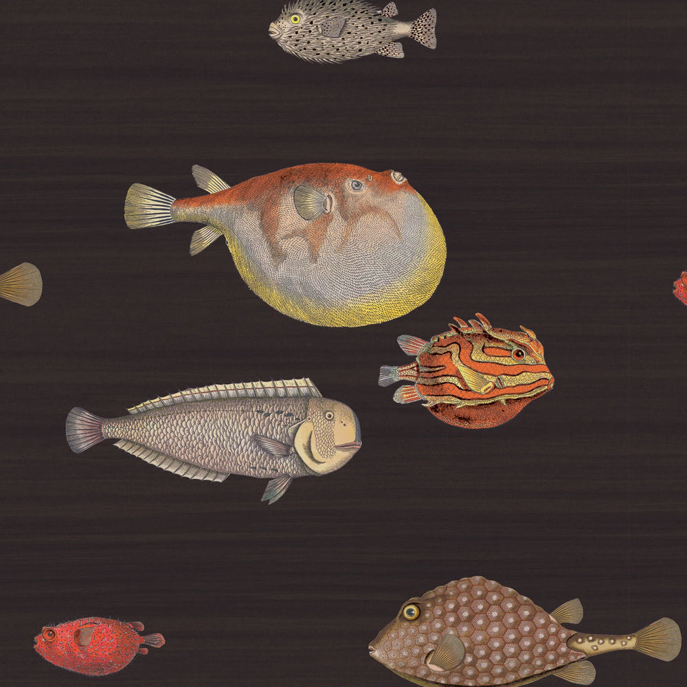 whimsical fish wallpaper