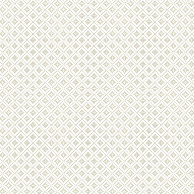 shades of cream