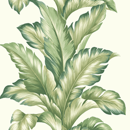 Big Leaf, Ivory|Green