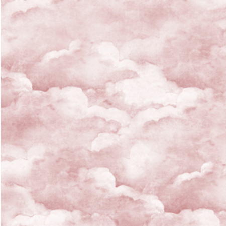 Dusty Pink Clouds