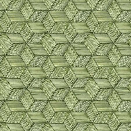 Intertwined Geometric Lime