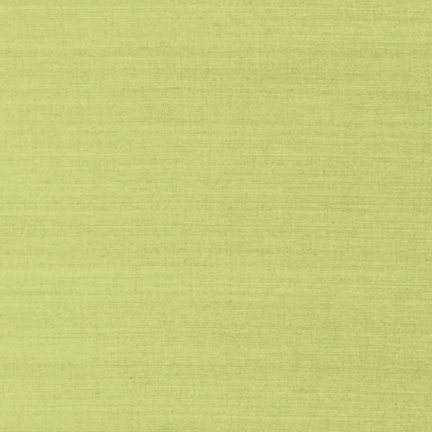 Shang Extra Fine Sisal Green
