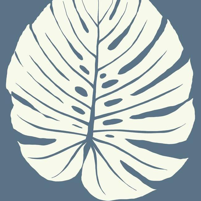 monstera leaf wallpaper