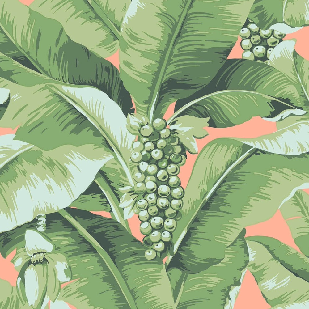 coral and green palm wallpaper
