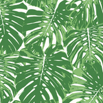 tropical palm leaf wallpaper