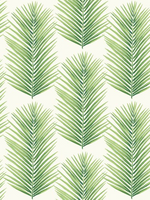 modern palm leaf design