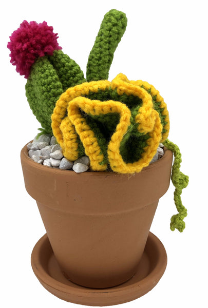 Crochet Cactus Red Fingers7