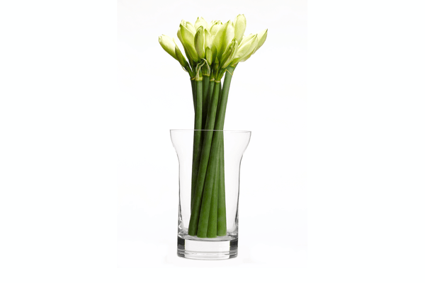 John Pawson - Vase by When Objects Work | JANGEORGe Interior Design