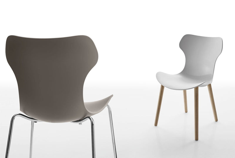 Papilio Shell Chair | B&B Italia | JANGEORGe Interior Design