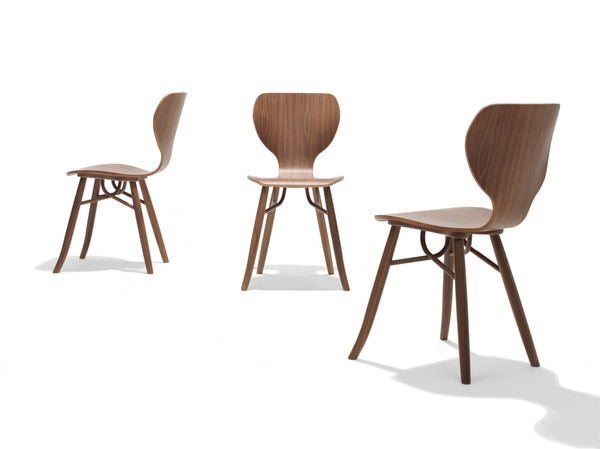 Tulipani - Dining Chair by Linteloo | JANGEORGe Interior Design