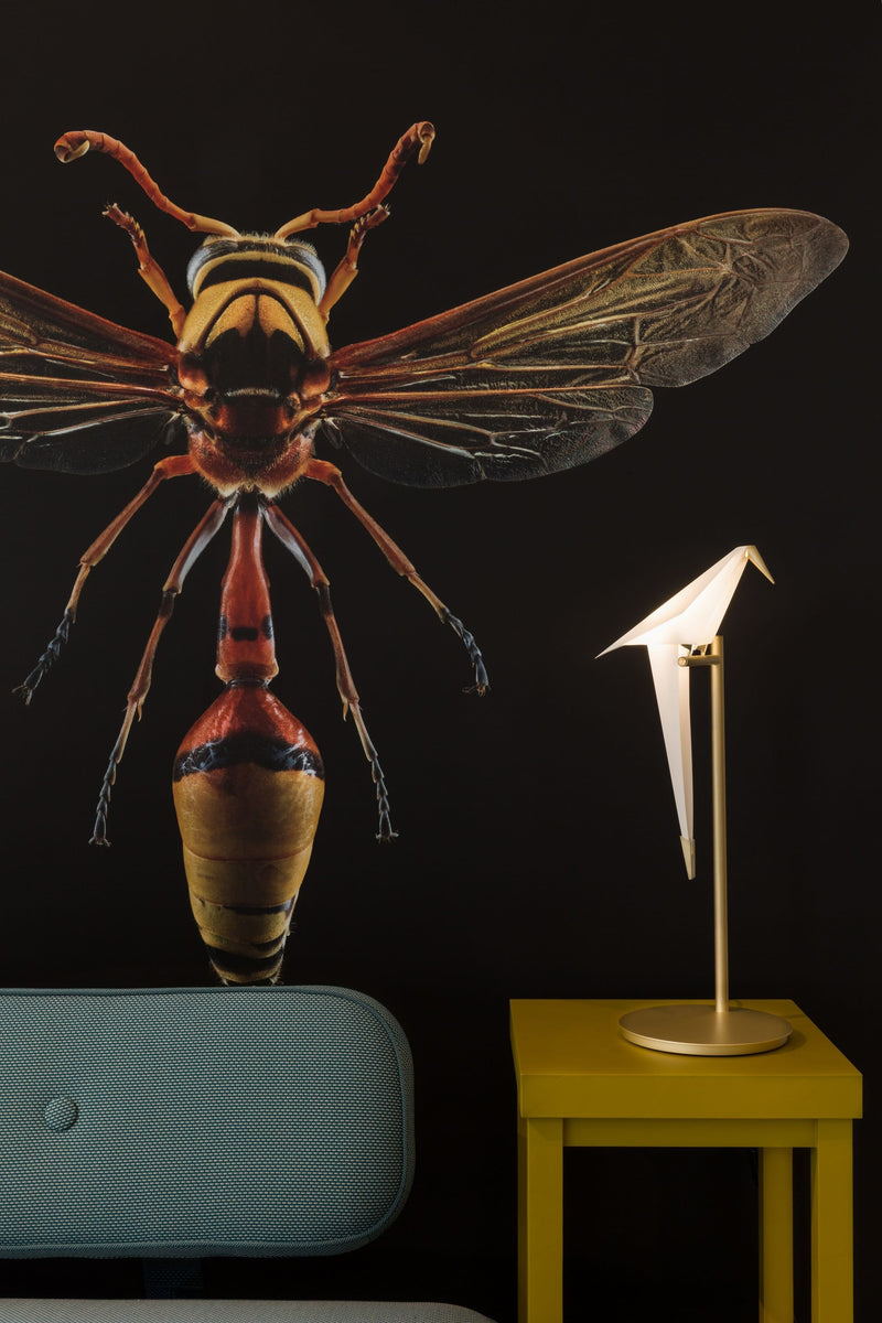 Perch Light - Table lamp by Moooi | JANGEORGe Interior Design