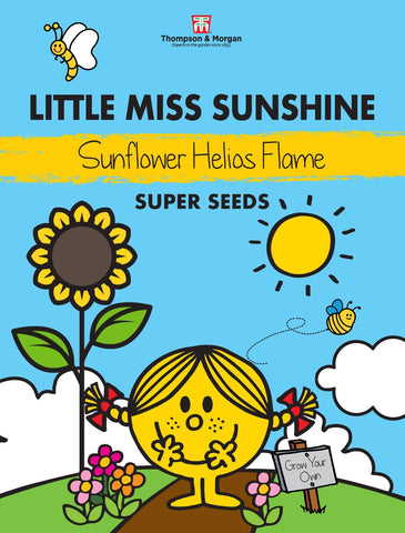 Thompson and Morgan Little Miss Sunshine Sunflower Seeds