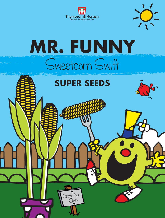 Mr Funny Sweetcorn Seeds