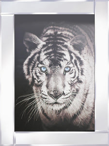 Tiger on Mirrored Frame