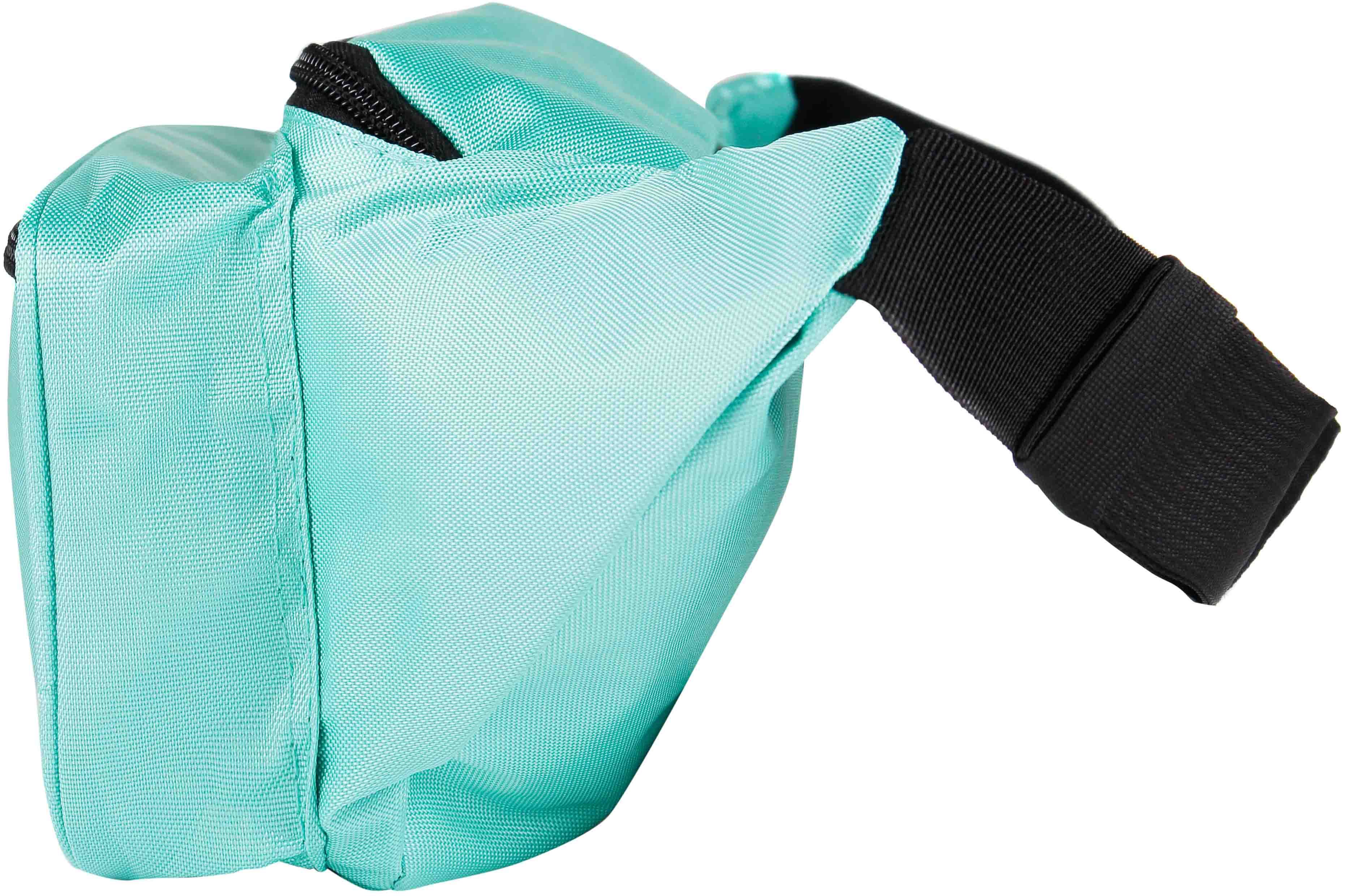 1958cbc2b812 Solid Color Fanny Pack (Teal) | SoJourner Bags