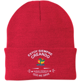 One Size Fits Most Knit Cap-Gorro