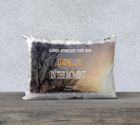 "PILLOW DECOR, SPIRITUAL INSPIRATIONAL AFFIRMATION, WELL BEING, ""ALWAYS APPRECIATE . . "" - Well Being Addict.Com"