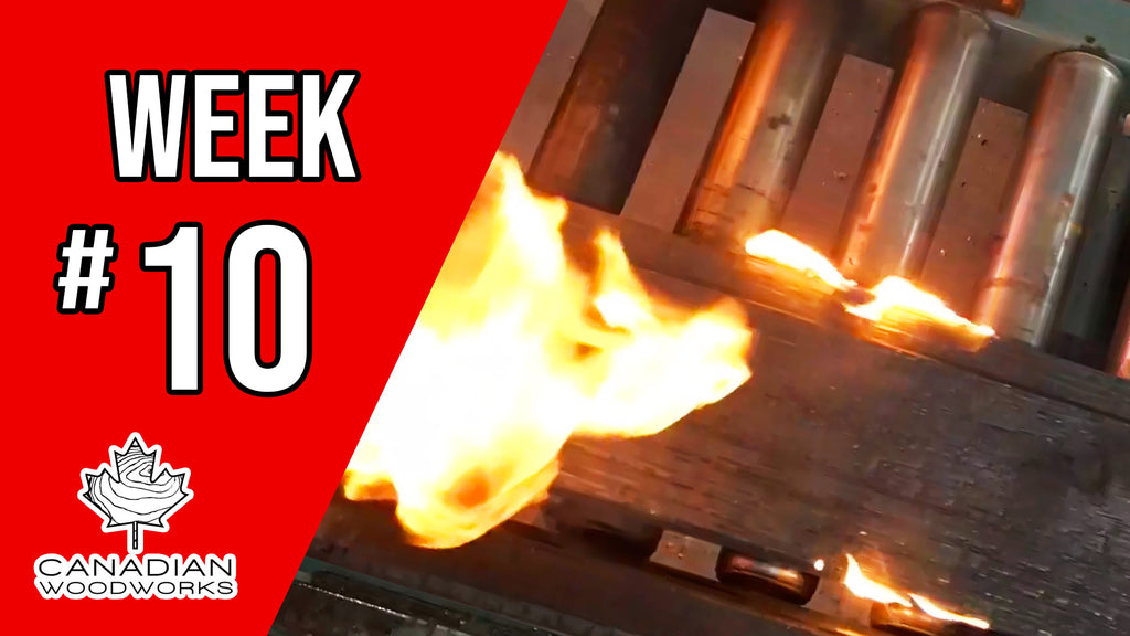 Weekly Re-cap video #10 Cutting Dimensional Lumber & Burning Wood!